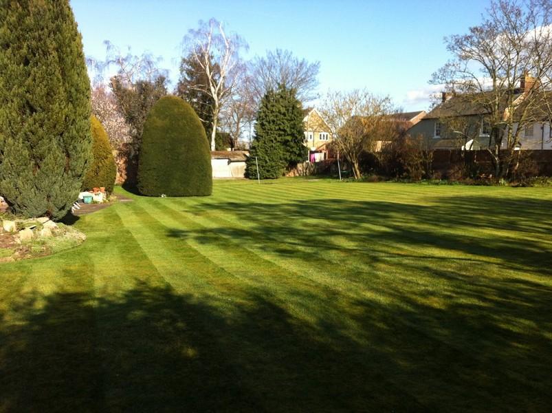 lawn treatment services